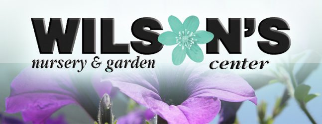 everything you need for home and yard - Wilsons Garden Center